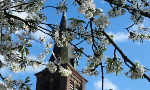 De Waalse Kerktuin